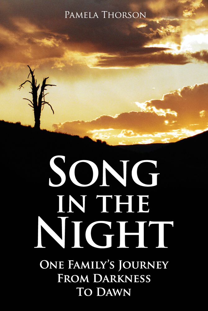 SongInTheNight_Cover
